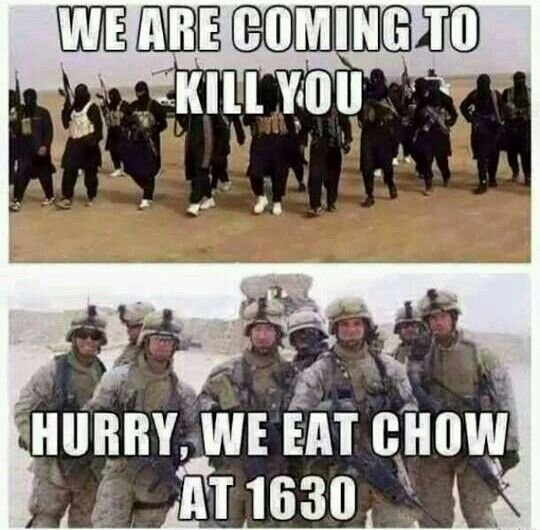 Chow Time.jpg