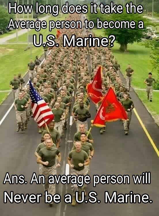 No Avg Marine.jpg